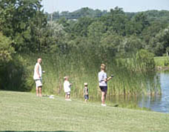 Maple Lakes: We offer great fishing!