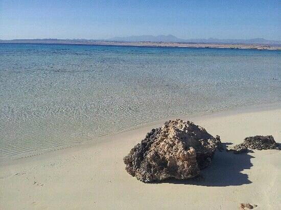 Sharm El Luli:                   febbraio 2013