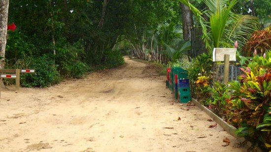 Playa Bluff Lodge: road