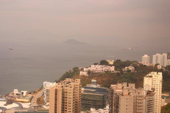 The T Hotel:                   Вид из номера на залив Виктория