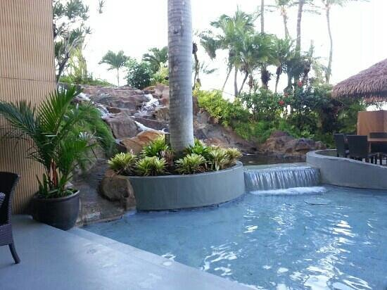 The Westin Maui Resort & Spa:                   waterfall at The Tropica
