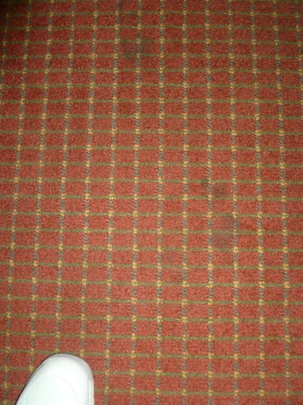 Flagship Inn And Suites: Dirty carpeting throughout- no bare feet here!