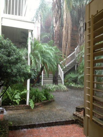 Dauphine Orleans Hotel:                   Beautiful rain taken from inside our room.