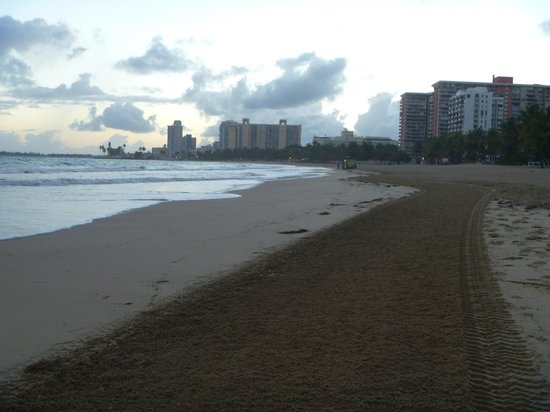Pine Grove Beach: Sea weed is cleaned in the morning