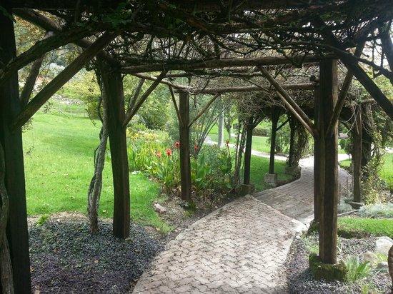 Hosteria Caballo Campana:                   caminito y jardines