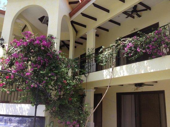 Playa Grande Park Hotel:                   Grounds