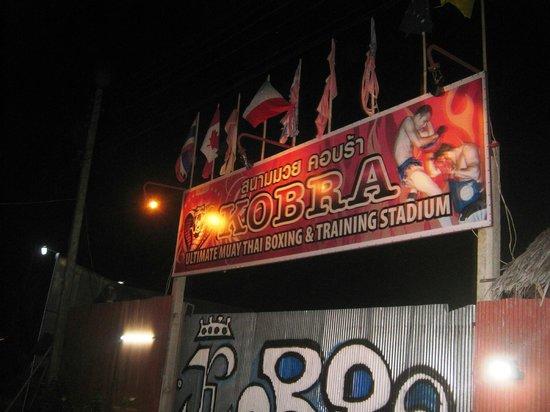 Kobra Muay Thai Boxing Stadium:                   entrance