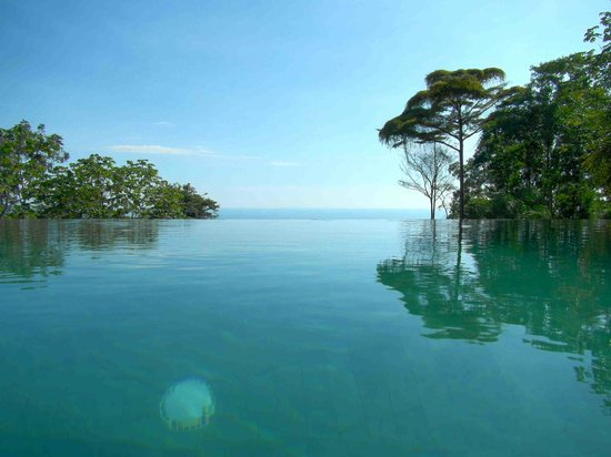 Oxygen Jungle Villas:                   Oxygen's Infinity Pool
