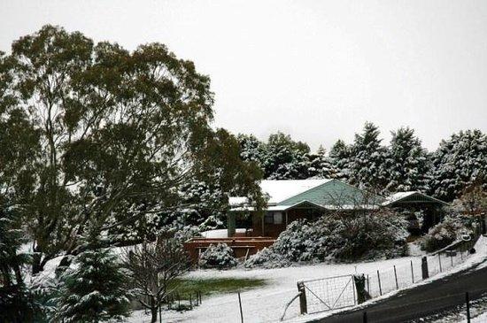 Inverness Farmstay: Snow