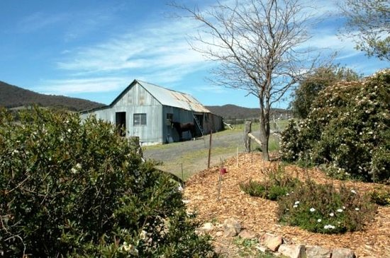 Inverness Farmstay: Shearing shed