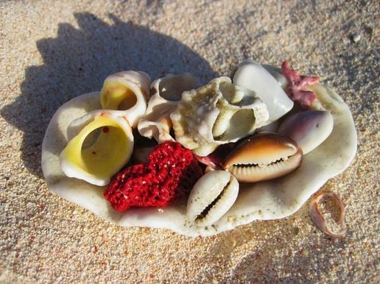 Vatulele Island Resort:                   пляж