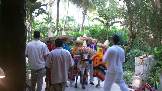 Mayan Palace Riviera Maya:                   Mexican Fiesta Night (big dinner show)