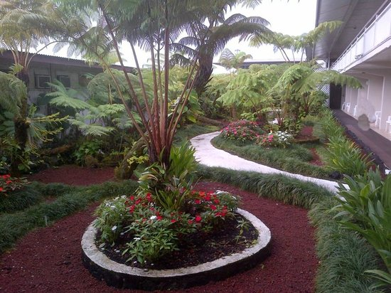 Hilo Seaside Hotel:                   Hotel grounds between first floor rooms