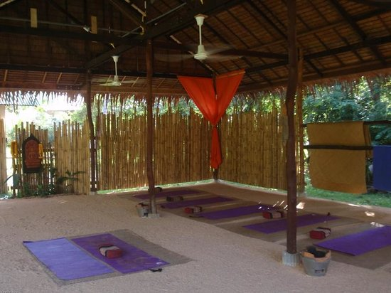 Grounded Koh Tao's Wellbeing Center : the yoga sala