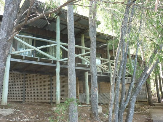 Evedon Park Bush Resort:                   Cabins front view
