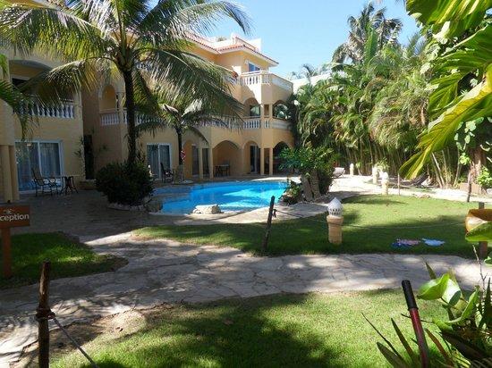 Hotel Villa Taina:                   Poolside