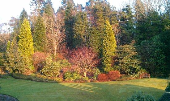The Ryebeck:                   Garden view