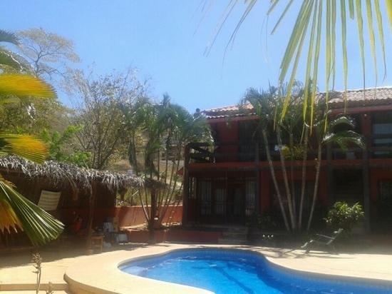 Massai Apartments:                   en la piscina