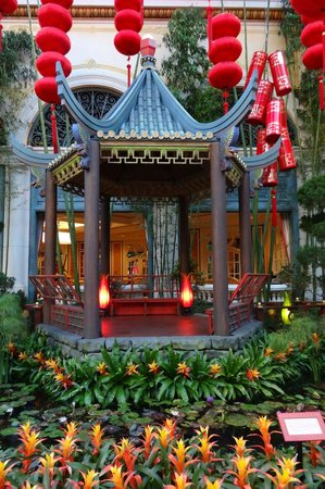 Bellagio Conservatory U0026 Botanical Garden: Chinese New Year In The  Bellagiou0027s Botanical Gardens