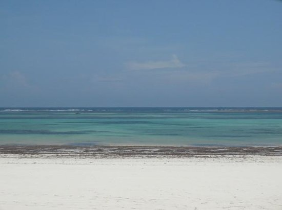 Galu Sea Lodge -Tamani:                   le sable blanc à perte de vue