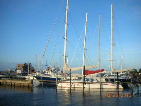Anton's Restaurant:                   more yachts