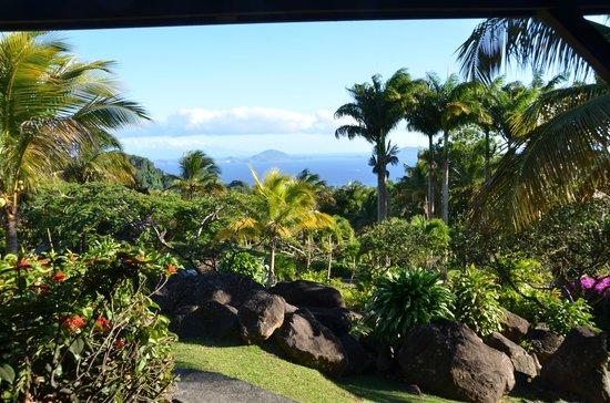 Vue de la terrasse picture of le jardin malanga trois for Jardin malanga