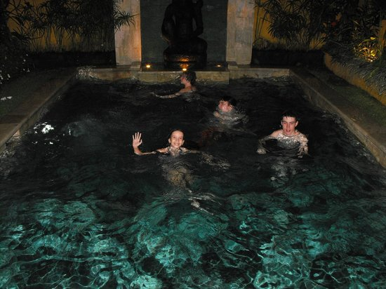 Villa Seriska Bali:                                     Pool at night