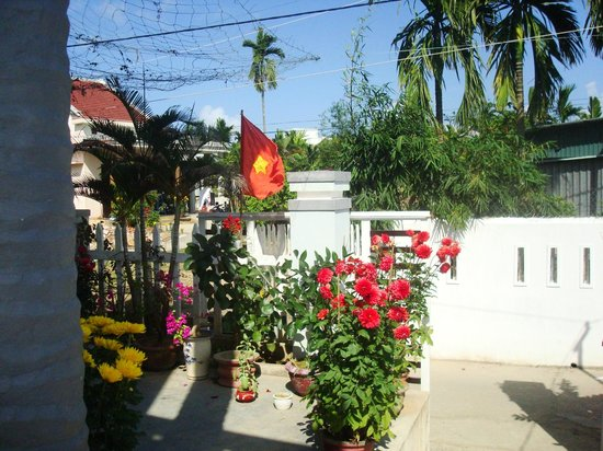 Cam Chau Homestay:                   Front area. Lots of plants for Tet!