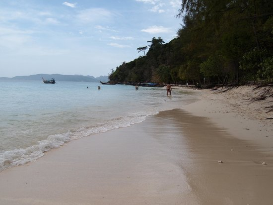 Andaman Camp and Day Cruise:                   Bamboo island 2