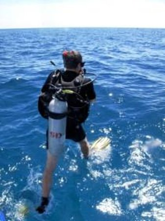 Freedom Divers Phuket : Dive into adventure with Freedom Divers