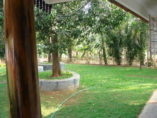 Ayuryogashram:                   garden view from room