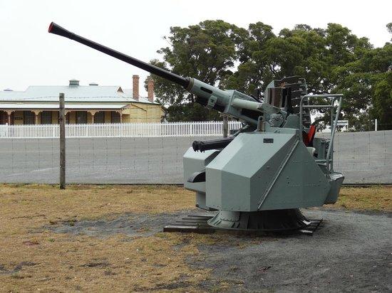 Naval Bofor Gun  Princess Royal Fortress