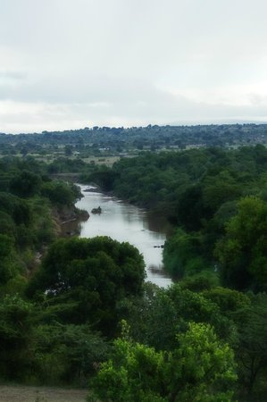 Mara Timbo Camp:                                     Aussicht vom Anfahrtsweg...Mara River