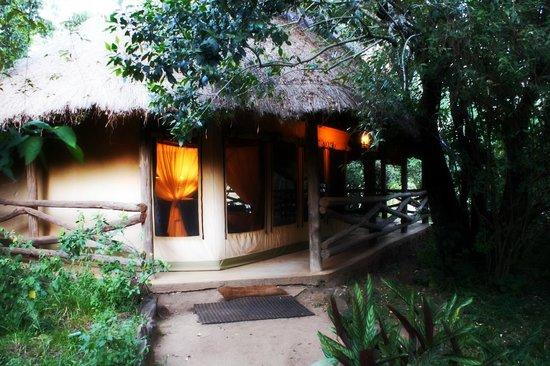 Mara Timbo Camp:                                     Luxus Zelt