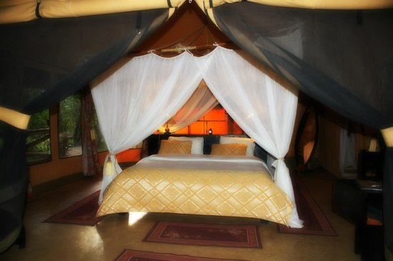 Mara Timbo Camp:                                     Zeltansicht