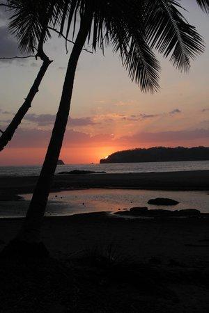 La Posada Bed & Breakfast:                   Sunset at Playa Carillo