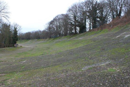 Brooklands Museum:                   Banked Circuit at Brooklands Raceway - January 2013