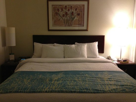 SpringHill Suites Seattle Downtown/South Lake Union:                   King size bed