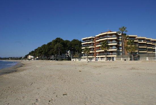 Voralmar-Mas d'en Gran Apartaments: EDIFICIO Y PLAYA