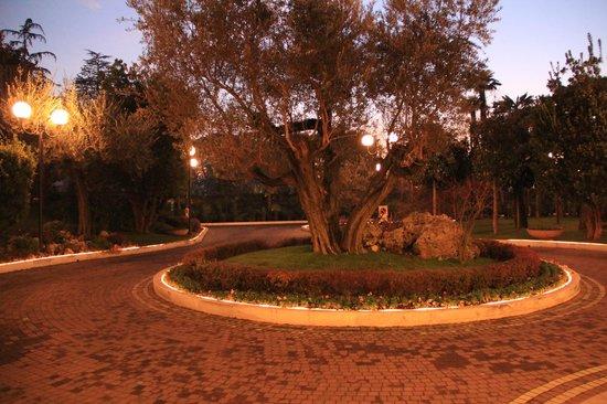 Hotel La Residence & Idrokinesis:                   Territory