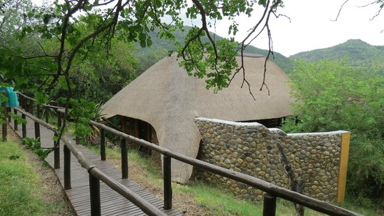 Mkuze Falls Lodge :                   Individual bungalows