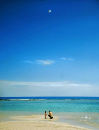 Blue Kay Mahahual :                                                       playa de blue bay mahahual