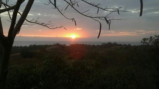 Tropical Treehouse:                   vista desde sunset hooch