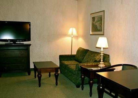 Hampton Inn Hampton Inn and Suites Lufkin: Guest Suite