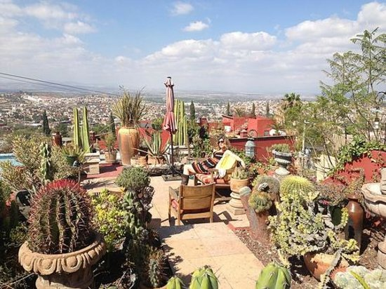 Casa Cinco Patios:                   cacti rooftop garden for sunrise and sunset