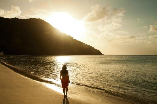 Coco Palm Resort :                   sunset