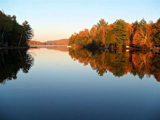 Homestead House Bed & Breakfast: Cottage country - 2 hours away
