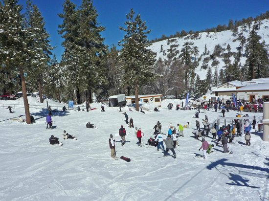 Mountain High Resort:                   Crowded near the bottom