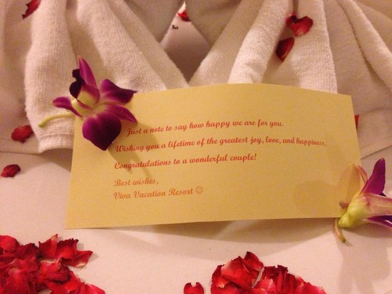Viva Vacation Resort:                   What we saw on our marriage night when we got back.