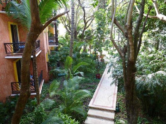 珊瑚礁帕雷卡酒店照片